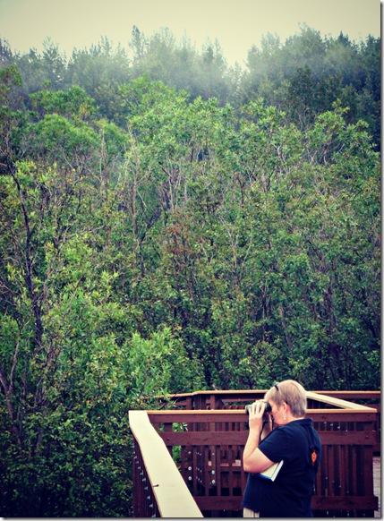 Potter's Marsh mom bird watching