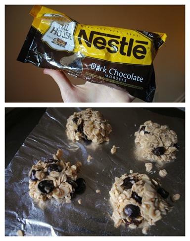 dark chocolate oat cookies