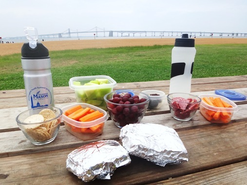 Picnic at Sandy Point State Park with Bay Bridge in background
