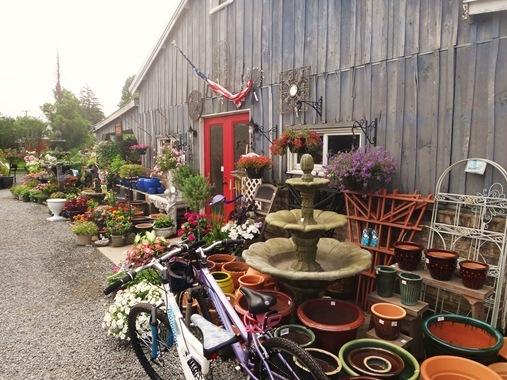 Nusery and garden in Stevensenville Maryland