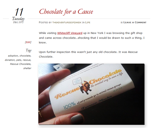 Chocolate for a Cause Blog Post