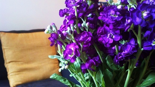 Trader Joe's flowers in the living room