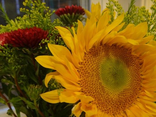 Sunflowers from Trader Joe's