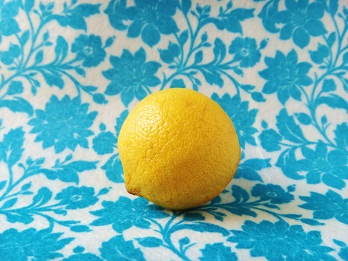 Lemon on blue floral felt