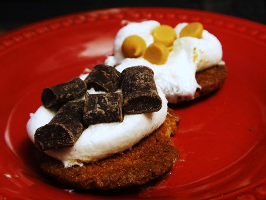 Gluten free ginger snap s'more