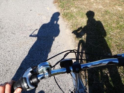BWI Bike Rental from K (3)