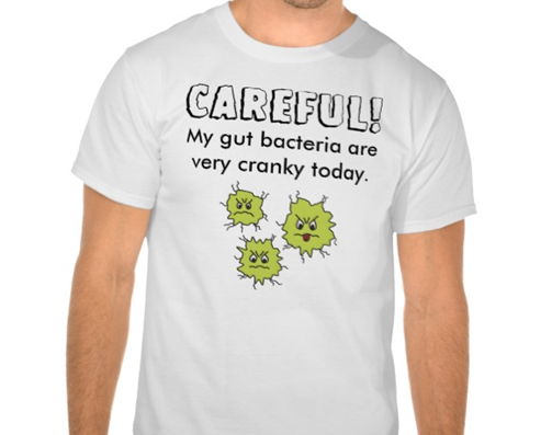 Careful! My gut bacteria are very cranky today t-shirt