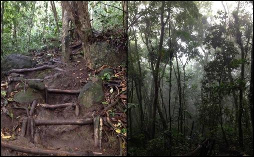 Gros Piton climb Soufriere St. Lucia