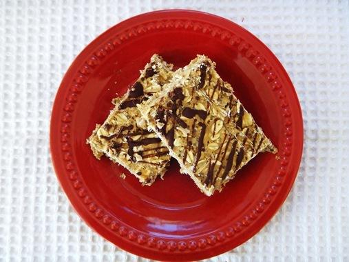 Homemade No Bake Protein Oat Snack Bars