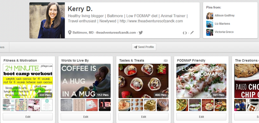 K's Pinterest Profile Page