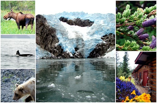 Alaska family vacation collage