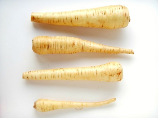 Parsnips on white surface