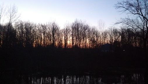 Sunrise over swamp in NY