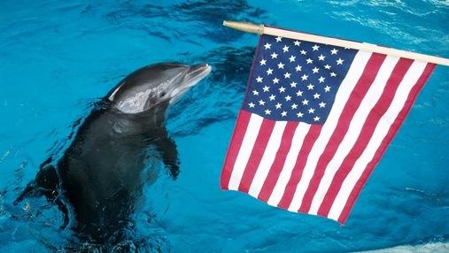 Nani with American Flag