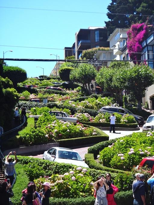 Curviest Stree in San Fran-Lombard Street